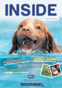 front cover of summer 2019 Woodside newsletter