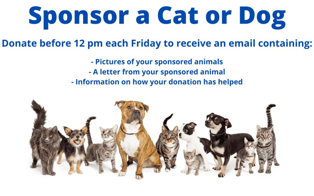 Sponsor a Dog or Cat